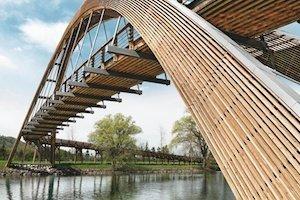 Rapporto annuale Holzbau Schweiz